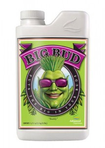 BIG BUD 1L | Stymulator kwitnienia - Advanced Nutrients